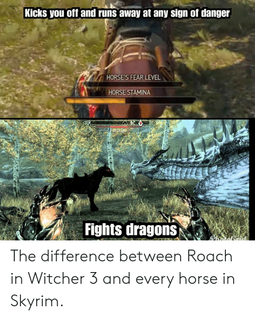 witcher 3: Kicks you off and runs away at any sign of danger  HORSE'S FEAR LEVEL  HORSE STAMINA  Fights dragons The difference between Roach in Witcher 3 and every horse in Skyrim.