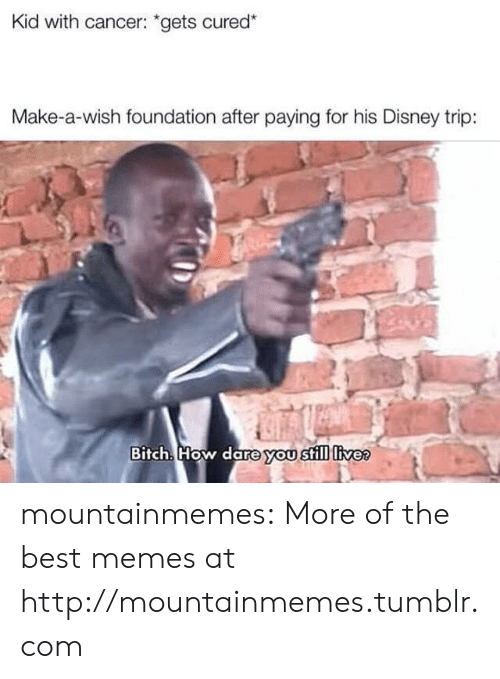 """Bitch, Disney, and Memes: Kid with cancer: """"gets cured*  Make-a-wish foundation after paying for his Disney trip:  Bitch. How dare you still livee mountainmemes:  More of the best memes at http://mountainmemes.tumblr.com"""