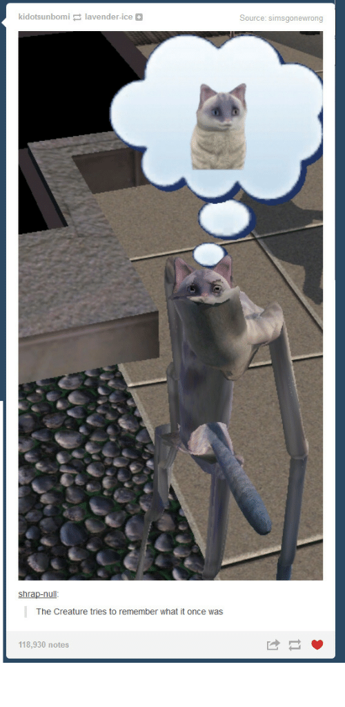 Null, Creature, and Ice: kidotsunbomilavender-ice  Source: simsgonewrong  shrap-null  The Creature tries to remember what it once was  118,930 notes ᛗᛖᚩᚹ