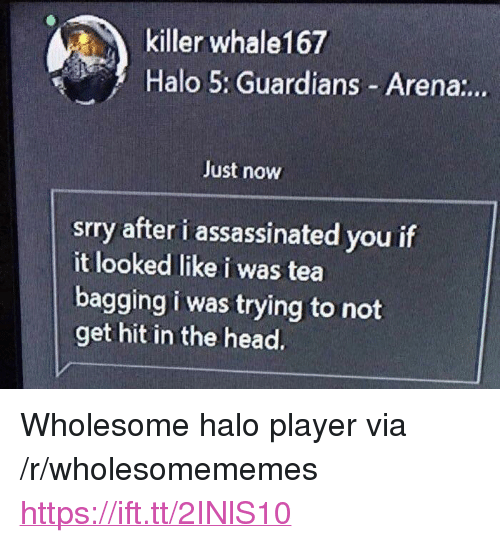 """Halo, Head, and Wholesome: killer whale167  Halo 5: Guardians Arena:..  Just now  srry after i assassinated you if  it looked like i was tea  bagging i was trying to not  get hit in the head. <p>Wholesome halo player via /r/wholesomememes <a href=""""https://ift.tt/2INlS10"""">https://ift.tt/2INlS10</a></p>"""