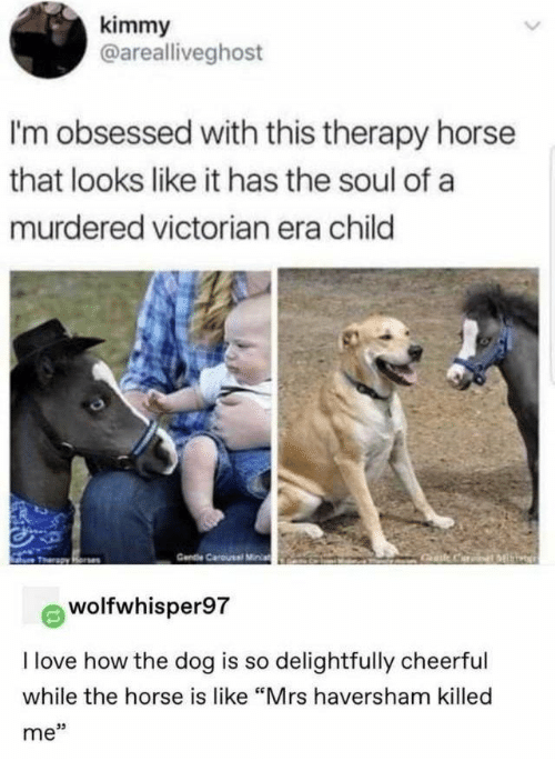 "mrs: kimmy  @arealliveghost  I'm obsessed with this therapy horse  that looks like it has the soul of a  murdered victorian era child  Cendie Carousel Miia  Gat CariML  Tharapy Rone  wolfwhisper97  I love how the dog is so delightfully cheerful  while the horse is like ""Mrs haversham killed  me"""