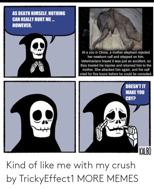 Kind: Kind of like me with my crush by TrickyEffect1 MORE MEMES