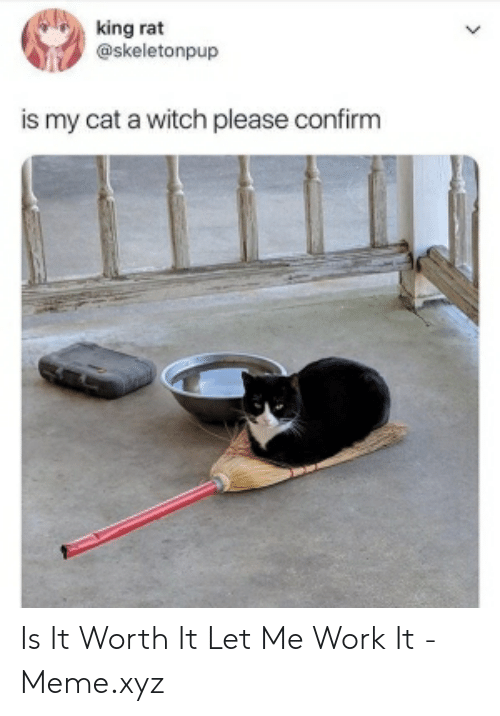 Meme, Work, and Witch: king rat  @skeletonpup  is my cat a witch please confirm Is It Worth It Let Me Work It - Meme.xyz