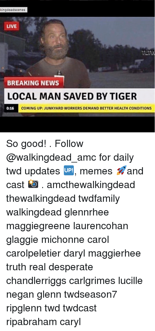 Carols: kingdeadscenes  LIVE  BREAKING NEWS  LOCAL MAN SAVED BY TIGER  0:16 COM  COMING UP:JUNKYARD WORKERS DEMAND BETTER HEALTH CONDITIONS So good! . Follow @walkingdead_amc for daily twd updates 🆙, memes 🚀and cast 📸 . amcthewalkingdead thewalkingdead twdfamily walkingdead glennrhee maggiegreene laurencohan glaggie michonne carol carolpeletier daryl maggierhee truth real desperate chandlerriggs carlgrimes lucille negan glenn twdseason7 ripglenn twd twdcast ripabraham caryl