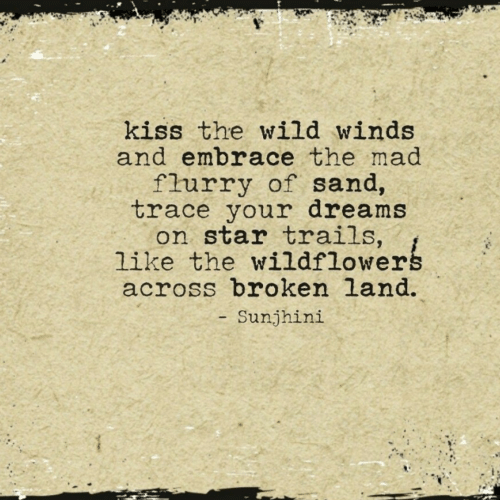 Kiss, Star, and Wild: kiss the wild winds  and embrace the mad  flurry of sand,  trace your dreams  on star trails,  like the wildflowerg  across broken land.  Sunjhini