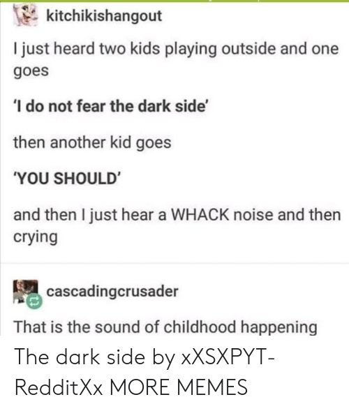 Crying, Dank, and Memes: kitchikishangout  I just heard two kids playing outside and one  goes  do not fear the dark side'  then another kid goes  'YOU SHOULD  and then I just hear a WHACK noise and then  crying  cascadingcrusader  That is the sound of childhood happening The dark side by xXSXPYT-RedditXx MORE MEMES