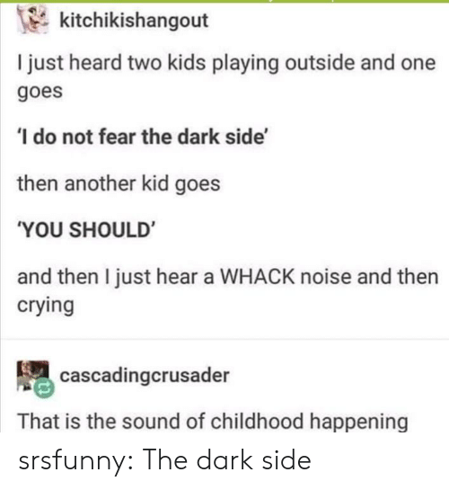 Crying, Tumblr, and Blog: kitchikishangout  I just heard two kids playing outside and one  goes  do not fear the dark side'  then another kid goes  'YOU SHOULD  and then I just hear a WHACK noise and then  crying  cascadingcrusader  That is the sound of childhood happening srsfunny:  The dark side