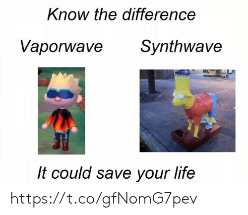 Synthwave: Know the difference  Vaporwave  Synthwave  It could save your life https://t.co/gfNomG7pev