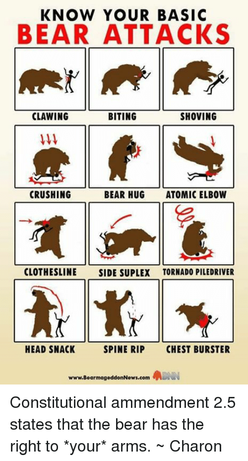 Suplexed: KNOW YOUR BASIC  BEAR ATTACKS  CLAWING  BITING  SHOVING  CRUSHING  BEAR HUG  ATOMIC ELBOW  CLOTHESLINE  SIDE SUPLEX TORNADO PILEDRIVER  HEAD SNACK  SPINE RIP  CHEST BURSTER  www.BearmageddonNews.com Constitutional ammendment 2.5 states that the bear has the right to *your* arms. ~ Charon