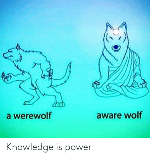 Power: Knowledge is power