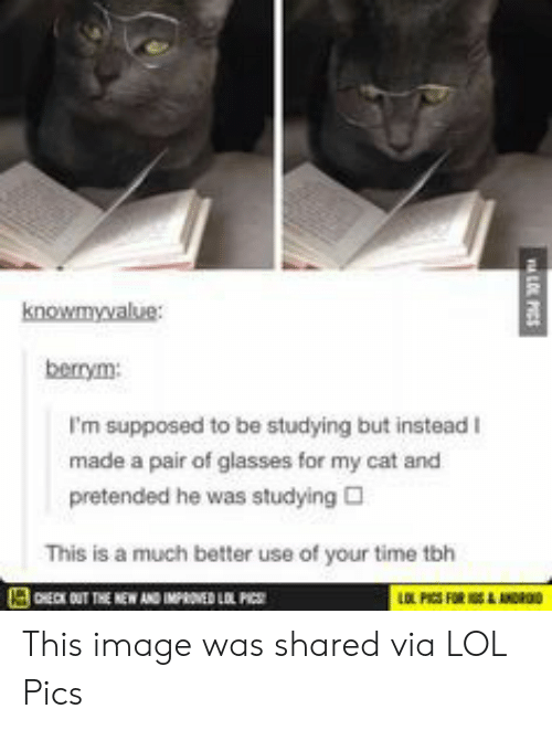 Lol, Tbh, and Glasses: knowmyvalue:  berrym:  I'm supposed to be studying but instead I  made a pair of glasses for my cat and  pretended he was studying  This is a much better use of your time tbh This image was shared via LOL Pics