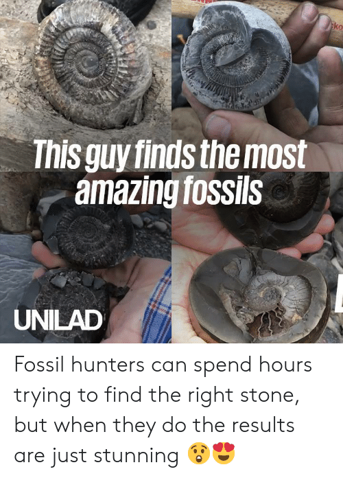 Fossil: ko  This guy finds the most  amazing fossils  UNILAD Fossil hunters can spend hours trying to find the right stone, but when they do the results are just stunning 😲😍
