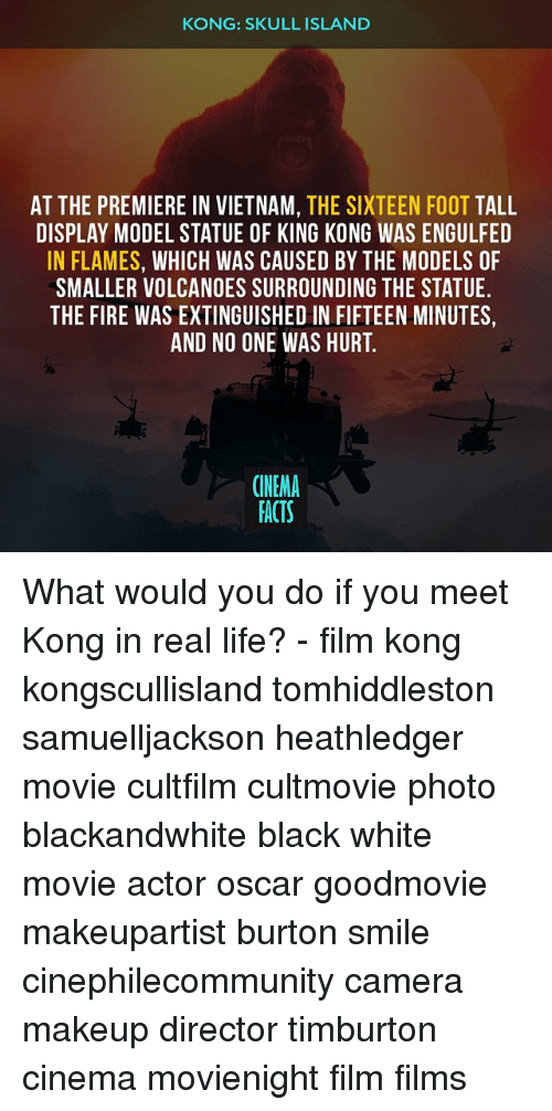 Islander: KONG: SKULL ISLAND  AT THE PREMIERE IN VIETNAM, THE SIXTEEN FOOT TALL  DISPLAY MODEL STATUE OF KING KONG WAS ENGULFED  IN FLAMES, WHICH WAS CAUSED BY THE MODELS OF  SMALLER VOLCANOES SURROUNDING THE STATUE  THE FIRE WAS EXTINGUISHED IN FIFTEEN MINUTES,  AND NO ONE WAS HURT.  CINEMA  FACTS What would you do if you meet Kong in real life? - film kong kongscullisland tomhiddleston samuelljackson heathledger movie cultfilm cultmovie photo blackandwhite black white movie actor oscar goodmovie makeupartist burton smile cinephilecommunity camera makeup director timburton cinema movienight film films