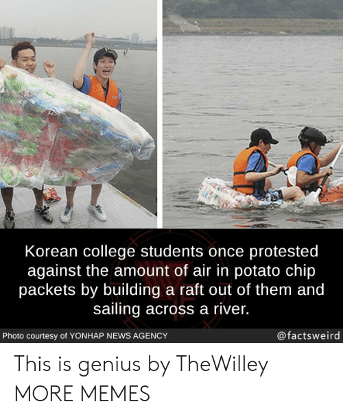 raft: Korean college students once protested  against the amount of air in potato chip  packets by building a raft out of them and  sailing across a river.  Photo courtesy of YONHAP NEWS AGENCY  @factsweird This is genius by TheWilley MORE MEMES