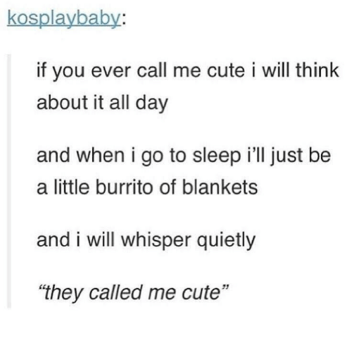 """Cute, Go to Sleep, and Sleep: kosplaybaby:  if you ever call me cute i will think  about it all day  and when i go to sleep i'll just be  a little burrito of blankets  and i will whisper quietly  """"they called me cute"""""""