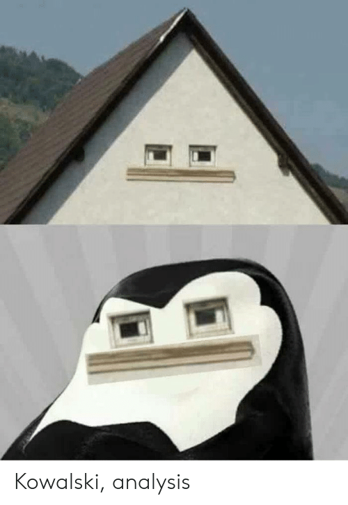 analysis: Kowalski, analysis