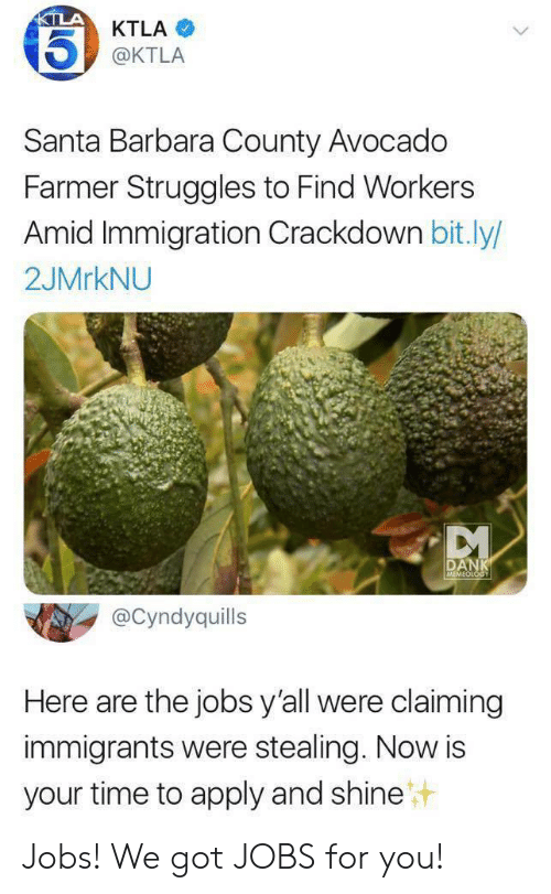 Farmer: KTLA  KTLA  @KTLA  Santa Barbara County Avocado  Farmer Struggles to Find Workers  Amid Immigration Crackdown bit.ly/  2JMRKNU  DANK  MEMEOLOGY  @Cyndyquills  Here are the jobs y'all were claiming  immigrants were stealing. Now is  your time to apply and shine Jobs! We got JOBS for you!