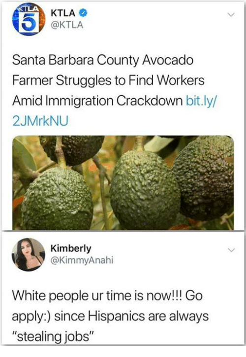 "White People, Avocado, and Immigration: KTLA  @KTLA  Santa Barbara County Avocado  Farmer Struggles to Find Workers  id Immigration Crackdown bit.ly/  2JMrkNU  Kimberly  @KimmyAnahi  White people ur time is now!!! Go  apply:) since Hispanics are always  ""stealing jobs"""