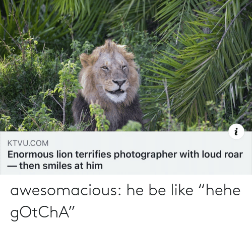 "Smiles: KTVU.COM  Enormous lion terrifies photographer with loud roar  -then smiles at him awesomacious:  he be like ""hehe gOtChA"""