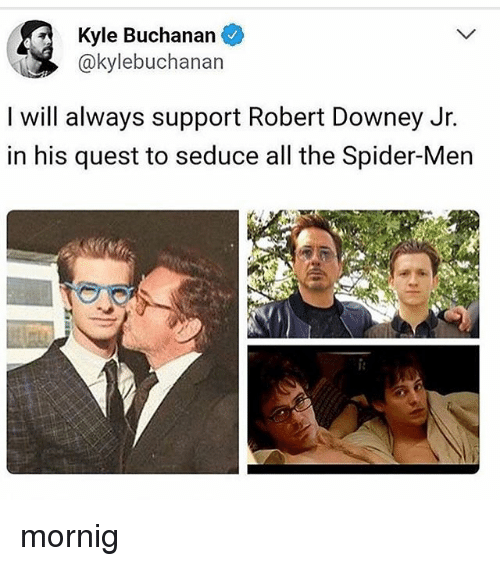 Memes, Robert Downey Jr., and Spider: Kyle Buchanan  @kylebuchanan  I will always support Robert Downey Jr.  in his quest to seduce all the Spider-Men mornig