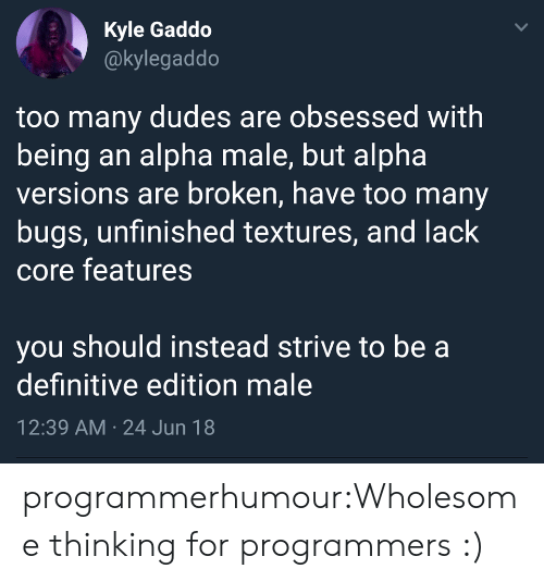 core: Kyle Gaddo  @kylegaddo  too many dudes are obsessed with  being an alpha male, but alpha  versions are broken, have too many  bugs, unfinished textures, and lack  core features  you should instead strive to be a  definitive edition male  12:39 AM 24 Jun 18  > programmerhumour:Wholesome thinking for programmers :)