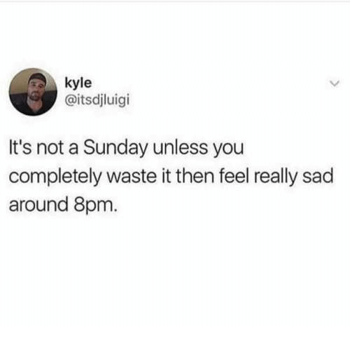 kyle: kyle  @itsdjluigi  It's not a Sunday unless you  completely waste it then feel really sad  around 8pm