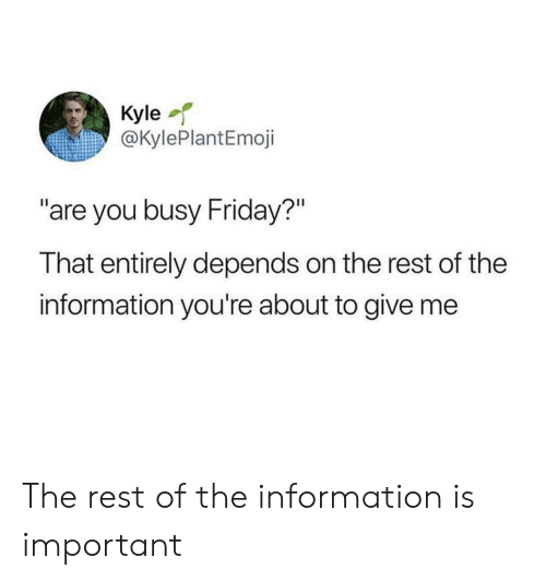 """Friday, Information, and Rest: Kyle  @KylePlantEmoji  """"are you busy Friday?""""  That entirely depends on the rest of the  information you're about to give me The rest of the information is important"""