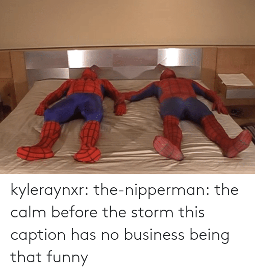 caption: kyleraynxr: the-nipperman: the calm before the storm this caption has no business being that funny