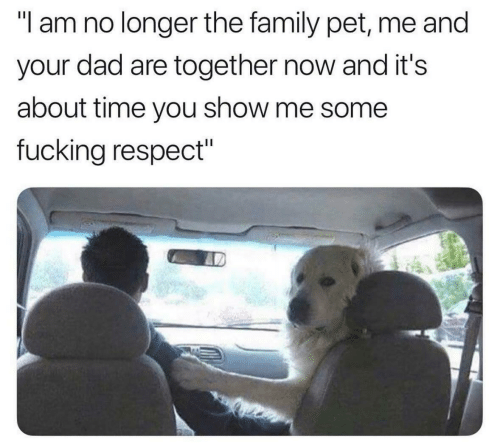"the family: ""l am no longer the family pet, me and  your dad are together now and it's  about time you show me some  fucking respect"""