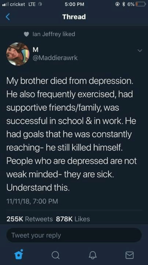 Dank, Family, and Friends: l cricket LTE  5:00 PM  Thread  Ian Jeffrey liked  @Maddierawrk  My brother died from depression  He also frequently exercised, had  supportive friends/family, was  successful in school & in work. He  had goals that he was constantly  reaching- he still killed himself.  People who are depressed are not  weak minded- they are sick.  Understand this  11/11/18, 7:00 PM  255K Retweets 878K Likes  Tweet your reply