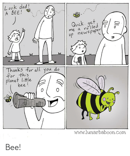 Dad, News, and Com: L ook dad!  A BEE!  Quick...get  me a ro e  V1C  up news paper  Thanks For all You do  for this  planet little  bee!  www.lunarbaboon.Com Bee!
