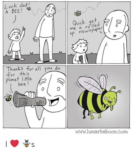 Dad, News, and Com: L ook dad!  A BEE!  Quick.. qet  ViC  me a ro T  up news paper  0  Thanks for all You do  for this  lanet litle  bee!  0  www.lunarbaboon.com I ❤️ 🐝s
