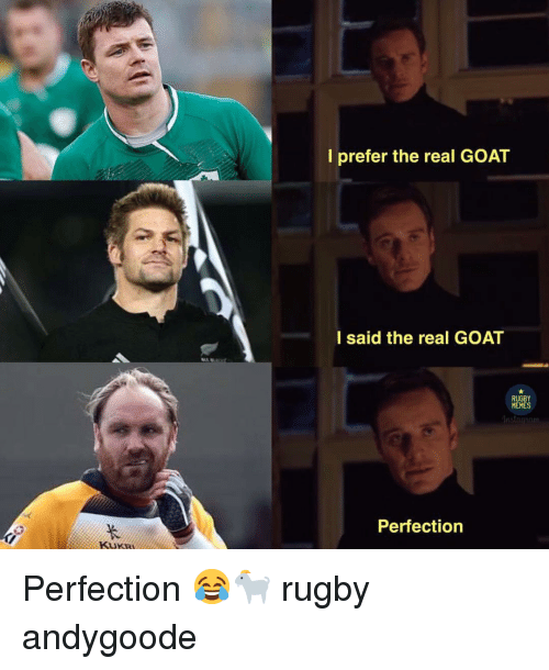 Memes, Goat, and The Real: l prefer the real GOAT  I said the real GOAT  RUGBY  MEMES  Perfection  KUKR Perfection 😂🐐 rugby andygoode