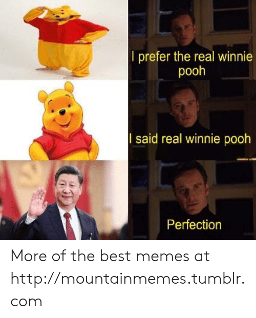 Winnie: l prefer the real winnie  pooh  said real winnie pooh  Perfection More of the best memes at http://mountainmemes.tumblr.com