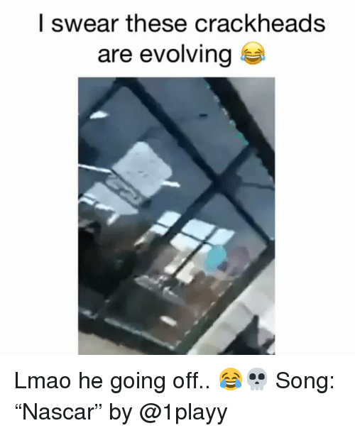 """Funny, Lmao, and Song: l swear these crackheads  are evolving Lmao he going off.. 😂💀 Song: """"Nascar"""" by @1playy"""