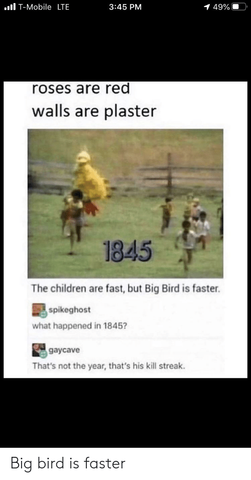 Children, Funny, and T-Mobile: l T-Mobile LTE  3:45 PM  1 49%  roses are red  walls are plaster  1845  The children are fast, but Big Bird is faster.  spikeghost  what happened in 1845?  gaycave  That's not the year, that's his kill streak. Big bird is faster