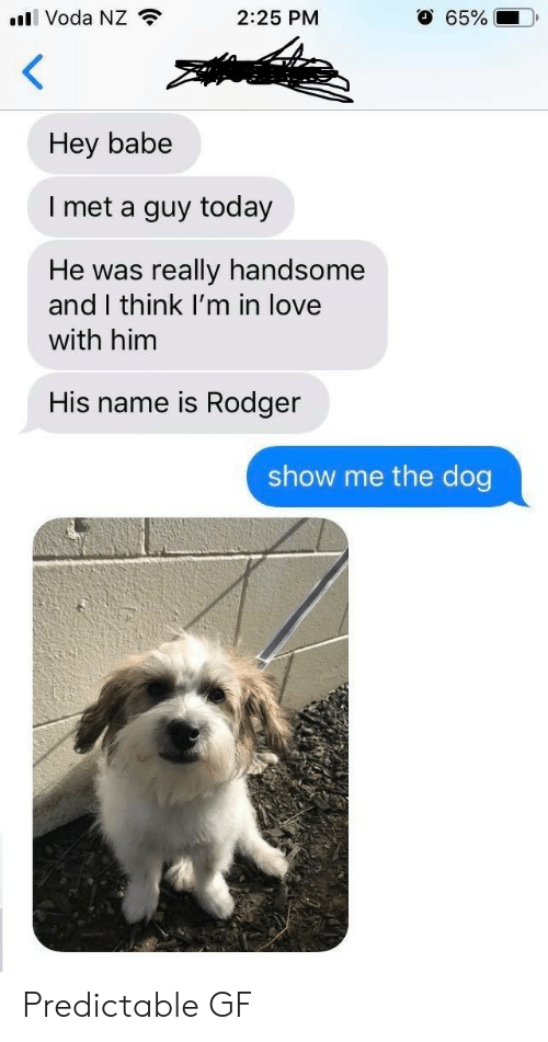 Love, Today, and Dog: l Voda NZ  O 65%  2:25 PM  Hey babe  I met a guy today  really handsome  and I think I'm in love  He was  with him  His name is Rodger  show me the dog Predictable GF