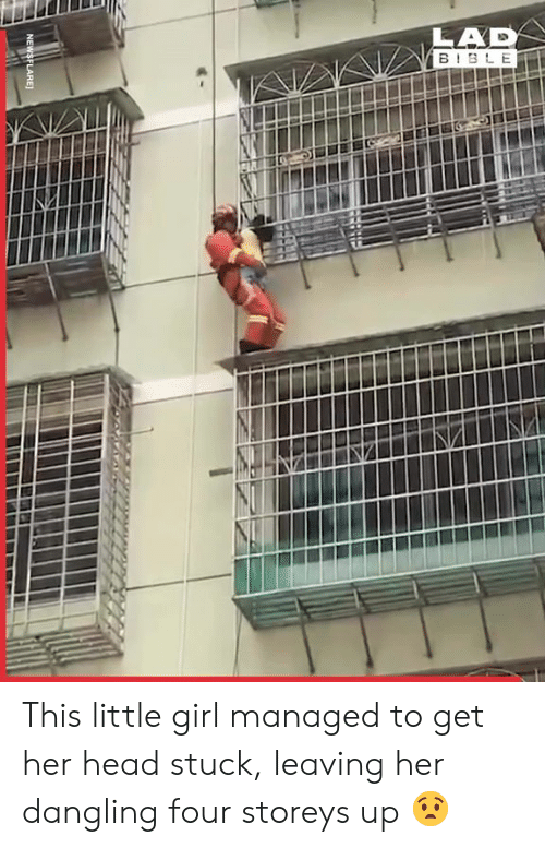 Dank, Head, and Girl: LAD  B BLE  NEWSFLARE This little girl managed to get her head stuck, leaving her dangling four storeys up 😧