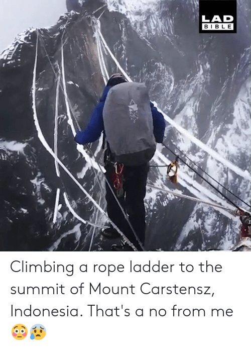 summit: LAD  BIBLE Climbing a rope ladder to the summit of Mount Carstensz, Indonesia. That's a no from me 😳😰