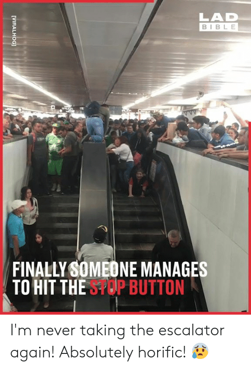 Escalator: LAD  BIBLE  FINALLY SOMEONE MANAGES  TO HIT THESPOP BUTTON  [VIRALHOG] I'm never taking the escalator again! Absolutely horific! 😰