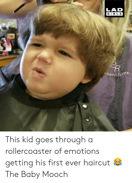 Dank, Haircut, and Bible: LAD  BIBLE  hero Reots This kid goes through a rollercoaster of emotions getting his first ever haircut 😂  The Baby Mooch