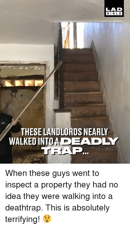 Dank, Bible, and 🤖: LAD  BIBLE  THESE LANDLORDS NEARLY  WALKED INTOADEADLY  TRAF When these guys went to inspect a property they had no idea they were walking into a deathtrap. This is absolutely terrifying! 😲
