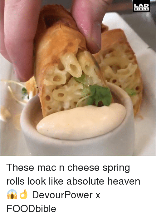 Dank, Heaven, and Bible: LAD  BIBLE These mac n cheese spring rolls look like absolute heaven 😱👌   DevourPower x FOODbible