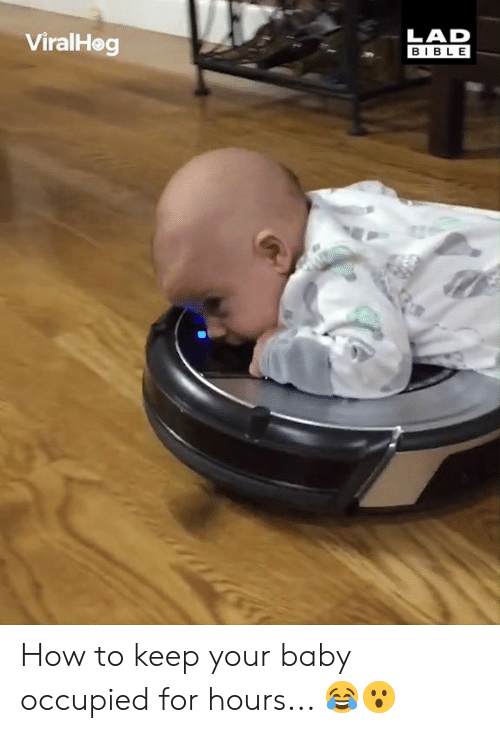 Dank, Bible, and How To: LAD  BIBLE  ViralHeg How to keep your baby occupied for hours... 😂😮