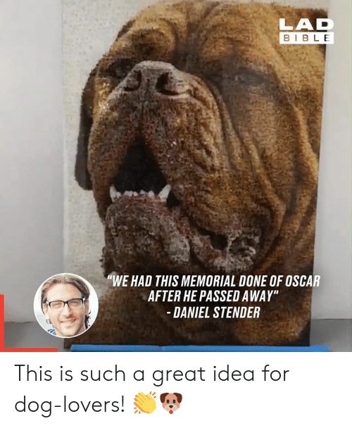 "Dank, Bible, and 🤖: LAD  BIBLE  ""WE HAD THIS MEMORIAL DONE OF OSCAR  AFTER HE PASSED AWAY""  DANIEL STENDER This is such a great idea for dog-lovers! 👏🐶"