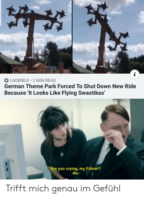 Crying, German, and Down: LADBIBLE 2 MIN READ  German Theme Park Forced To Shut Down New Ride  Because 'It Looks Like Flying Swastikas'  Are you crying, my Führer?  -No. Trifft mich genau im Gefühl