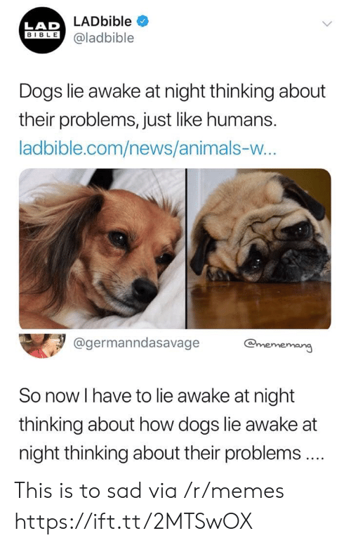 lad: LADbible  LAD  BIBLE@ladbible  Dogs lie awake at night thinking about  their problems, just like humans.  ladbible.com/news/animals-w...  @germanndasavage  @mememang  So now I have to lie awake at night  thinking about how dogs lie awake at  night thinking about their problems.  > This is to sad via /r/memes https://ift.tt/2MTSwOX