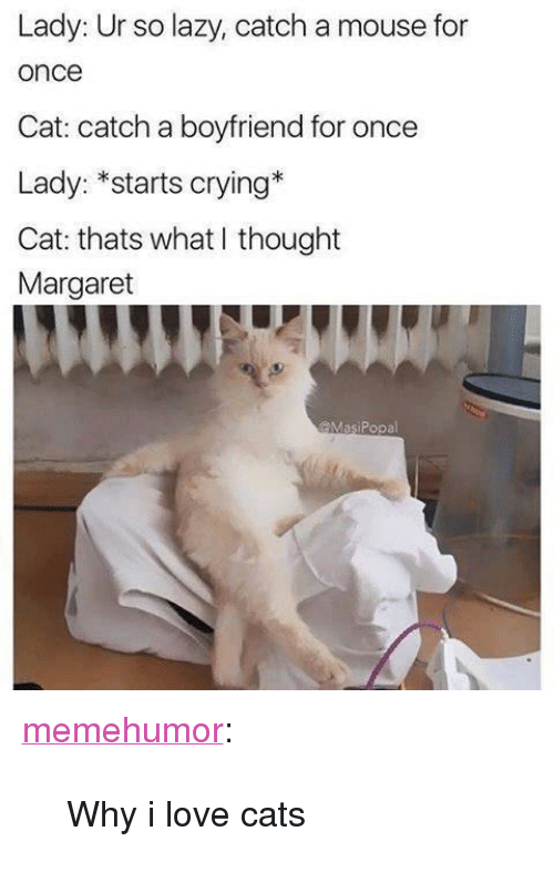"""Cats, Crying, and Lazy: Lady: Ur so lazy, catch a mouse for  once  Cat: catch a boyfriend for once  Lady: *starts crying*  Cat: thats what I thought  Margaret  @MasiPopal <p><a href=""""http://memehumor.net/post/171341743121/why-i-love-cats"""" class=""""tumblr_blog"""">memehumor</a>:</p>  <blockquote><p>Why i love cats</p></blockquote>"""