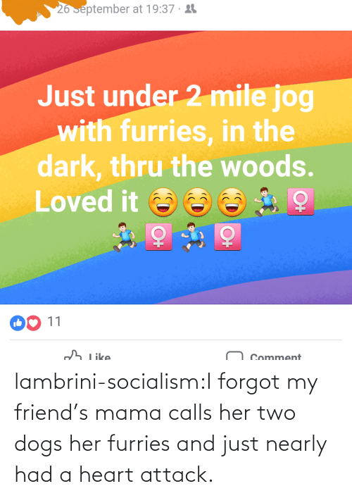 Dogs, Friends, and Tumblr: lambrini-socialism:I forgot my friend's mama calls her two dogs her furries and just nearly had a heart attack.