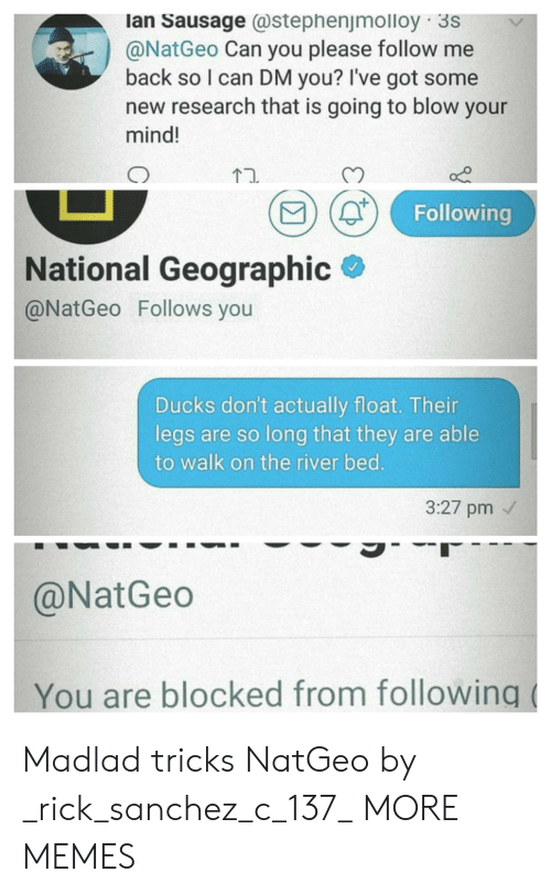Geographic: lan Sausage stephenjmolloy 3S  @NatGeo Can you please follow me  back so I can DM you? I've got some  new research that is going to blow your  mind!  ti.  Following  National Geographic  @NatGeo Follows you  Ducks don't actually float. Thein  legs are so long that they are able  to walk on the river bed  3:27 pm  @NatGeo  You are blocked from following Madlad tricks NatGeo by _rick_sanchez_c_137_ MORE MEMES